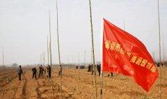 禹州市自然资源和规划局积极参加冬季义务植树造林活动
