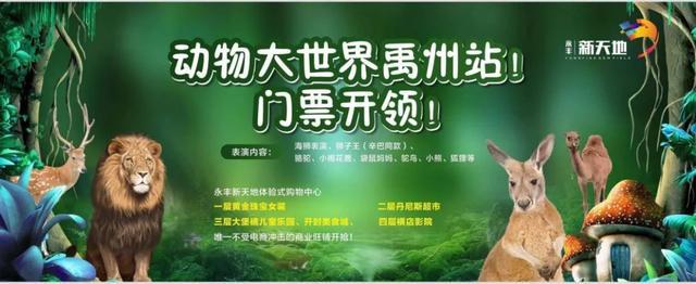 禹州永丰新天地将上演一场明星演唱会!邂逅爱豆,唤醒青春记忆!