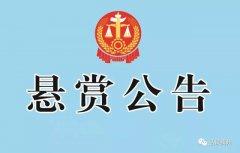 禹州这些人和车辆被许昌市法院悬赏缉拿!最高可获5000元奖励
