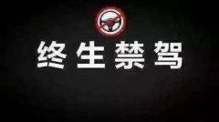 禹州这8人无证酒驾撞人重伤致死!终身禁驾、获刑