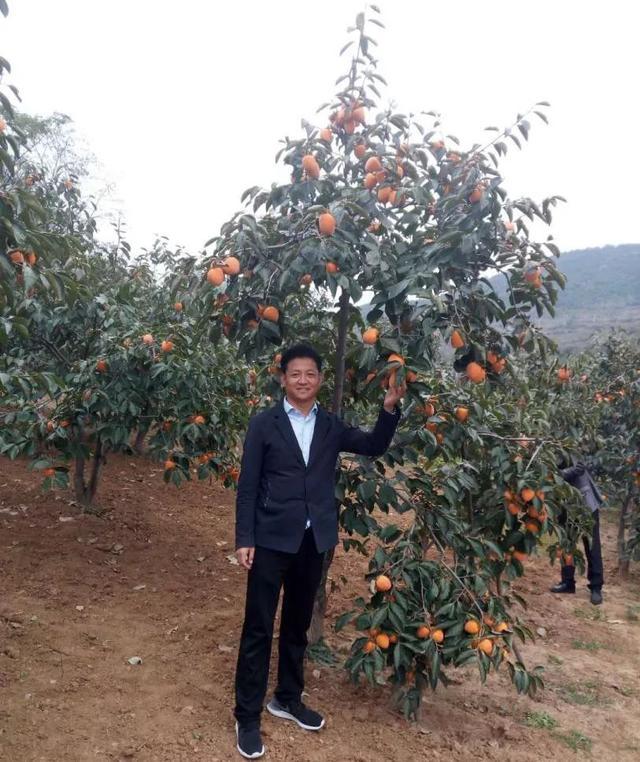 一年收入380万!磨街乡刘门村是怎样做到的?