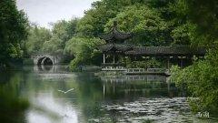 千亿绿城,为禹州美好生活而来!