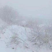 昨晚禹州苌庄、磨街大雪纷飞 其它地方不见雪大揭秘