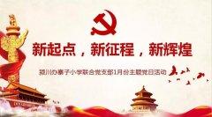 禹州颍川办寨子小学联合支部开展2020年1月份主题党日活动
