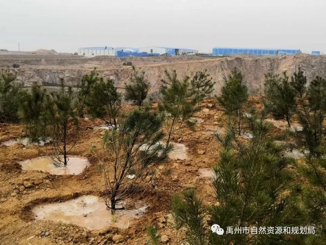 禹州市自然资源和规划局扎实推进疫情防控期间重点工作