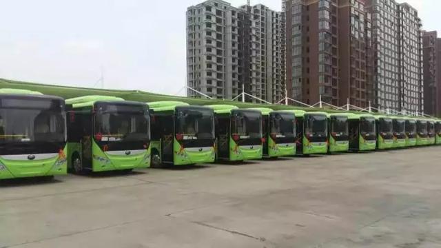 即日起禹州6、8、9、10、23、29路公交恢复线路运营!