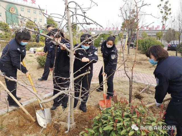 禹州市森林公安局:绽放芳华 栽种希望