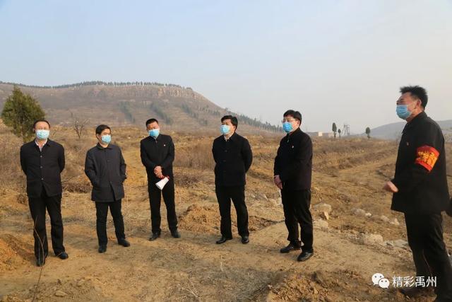 禹州市长范晓东:细化任务强化措施扎实做好林业生态建设工作