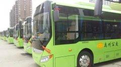 禹州1路、5路、7路、28路、106路、城乡公交恢复运营
