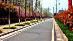 三月份的禹州,美的超出你想象!东区这个地方,美的不光是景色.