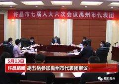 胡五岳与禹州市代表团一同审议政府工作报告