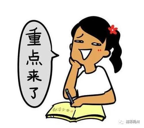 """高手在民间——禹州铁山""""鞭王"""""""