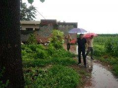 禹州小吕镇:冒雨排查空巢老人住房,确保危房不住人