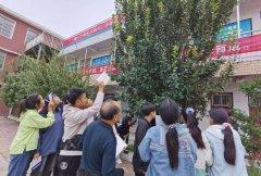 禹州南区学校社团活动正如火如荼
