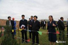 禹州市长范晓东调研彭化路沿线矿山生态修复工作