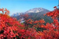 2020大鸿寨红叶节将在10月18日盛大开幕!