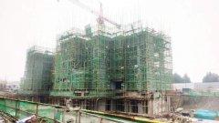 禹州建业大城小院12月工程进度丨锦书家音伴,遥寄三冬暖