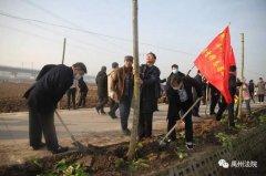 禹州市人民法院开展冬季义务植树活动