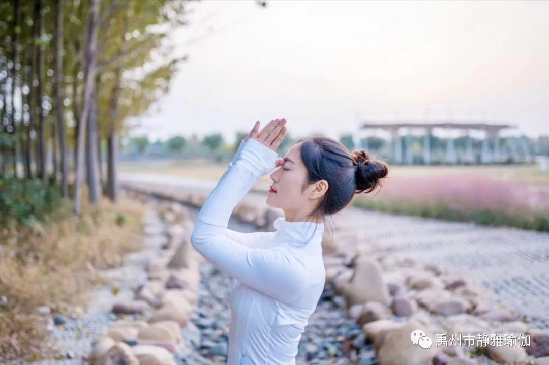 禹州静雅瑜伽1月11日~1月16日课表