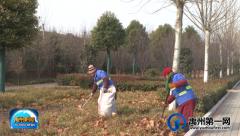 禹州绿化设施大扫除,干干净净迎新春