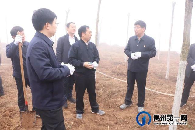 禹州市开展春季全民义务植树活动