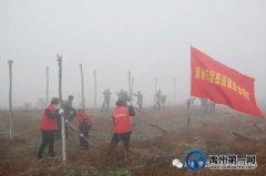 禹州市自然资源和规划局志愿者参加春季义务植树活动