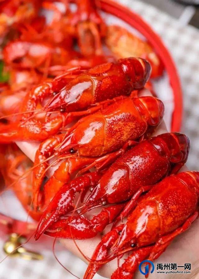 禹州一家星级宾馆开启龙虾盛宴!