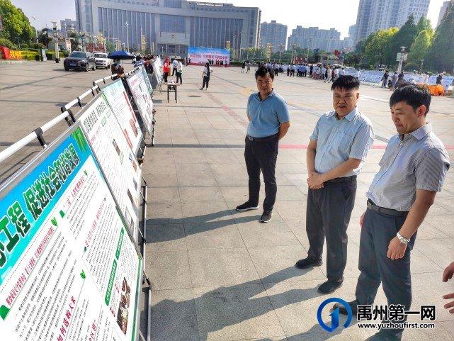 河南禹州:扛稳粮食安全重任,守护人民舌尖上的安全
